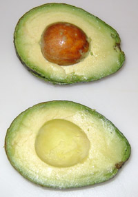 avocado cut in half, stone (pit) intact