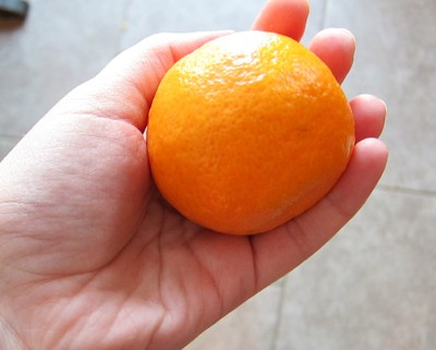 tangerine in the hand