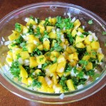 mango salsa recipe picture