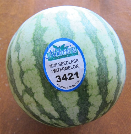 personal seedless small mini watermelon
