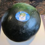 kids choice watermelon variety