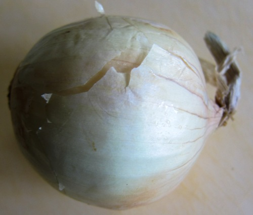 picture of the whole onion, I'm about to start peeling it
