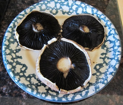 microwaved portobello mushrooms
