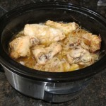 chicken onion stew slow cooker recipe