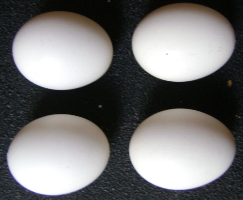 eggs for sharlotka apple cake