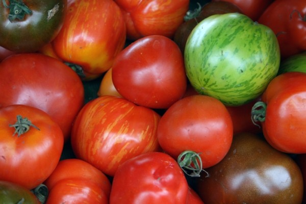 Tasty Ways To Use Up All Those Tomatoes From Your Garden!