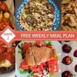 free meal plan week 2 menu