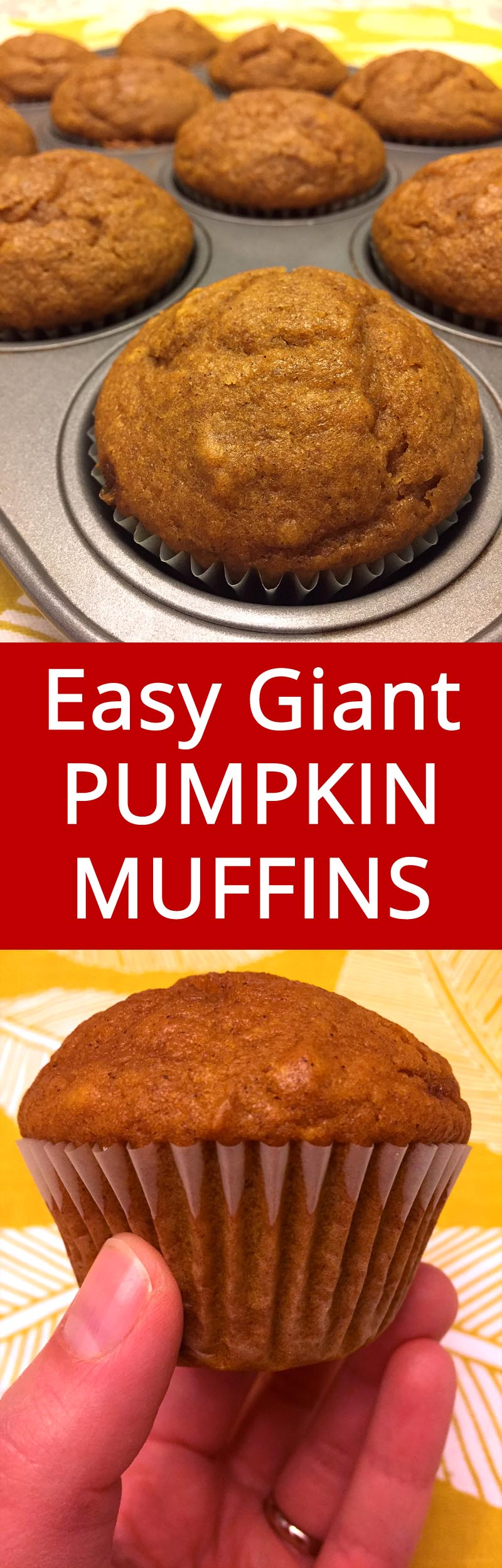These pumpkin muffins are truly huge and moist, and the texture is best ever!  I love these muffins!   MelanieCooks.com
