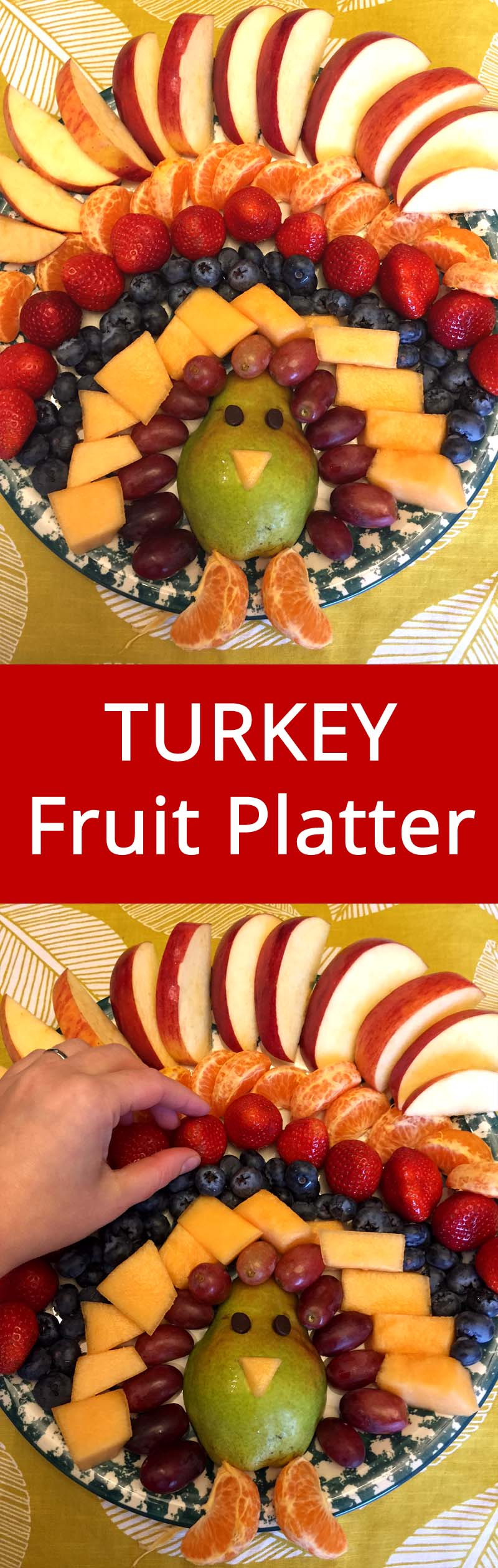 Turkey Fruit Platter :) Lots of other AMAZING Thanksgiving recipes on this site! | MelanieCooks.com