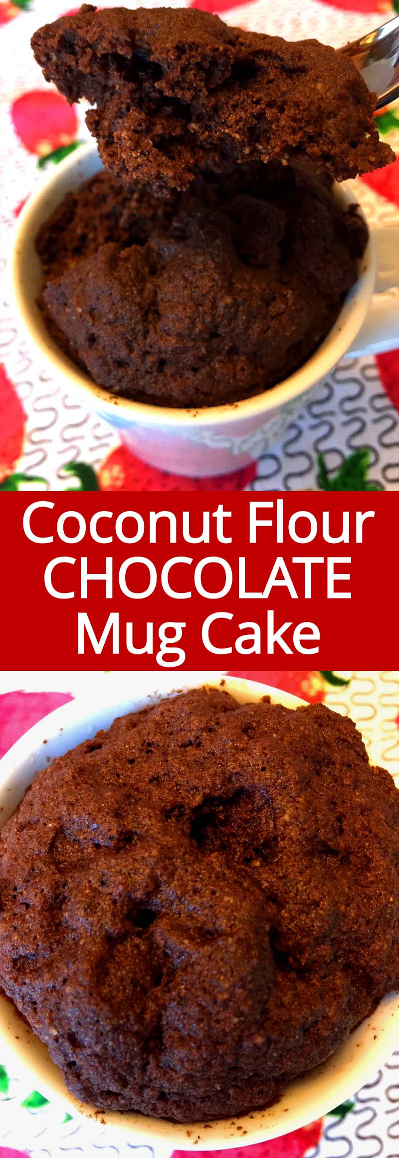 This gluten-free paleo chocolate mug cake is made with coconut flour and it tastes amazing!  I can eat this healthy coconut flour chocolate mug cake for breakfast every day!