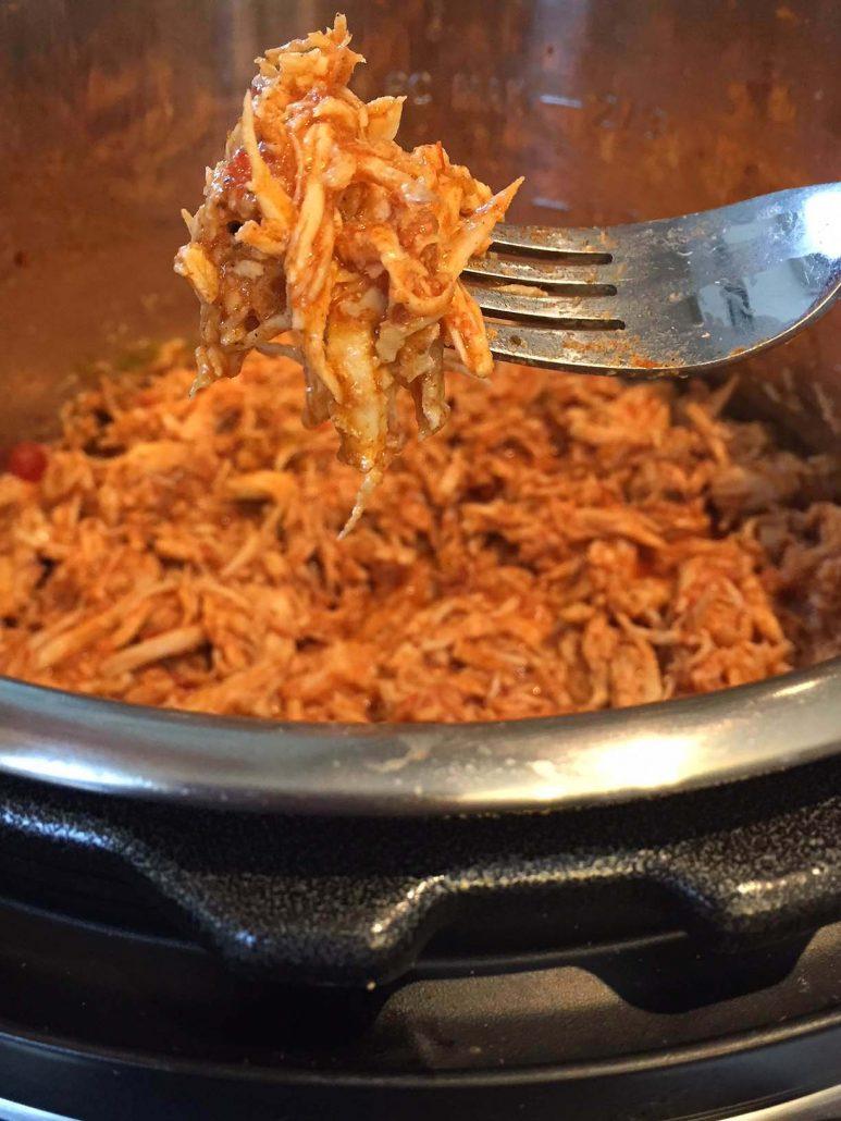 Instant Pot Salsa Chicken Recipe
