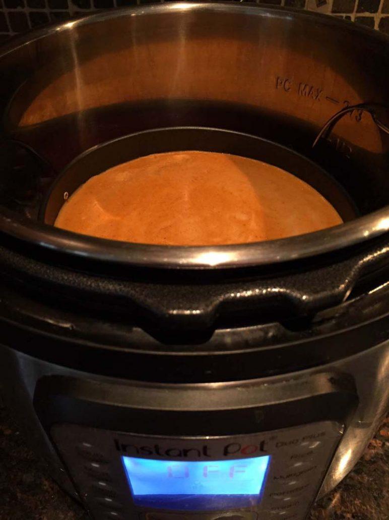 Easy Instant Pot Pumpkin Pie