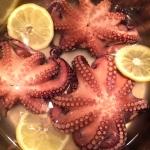 Instant Pot Octopus